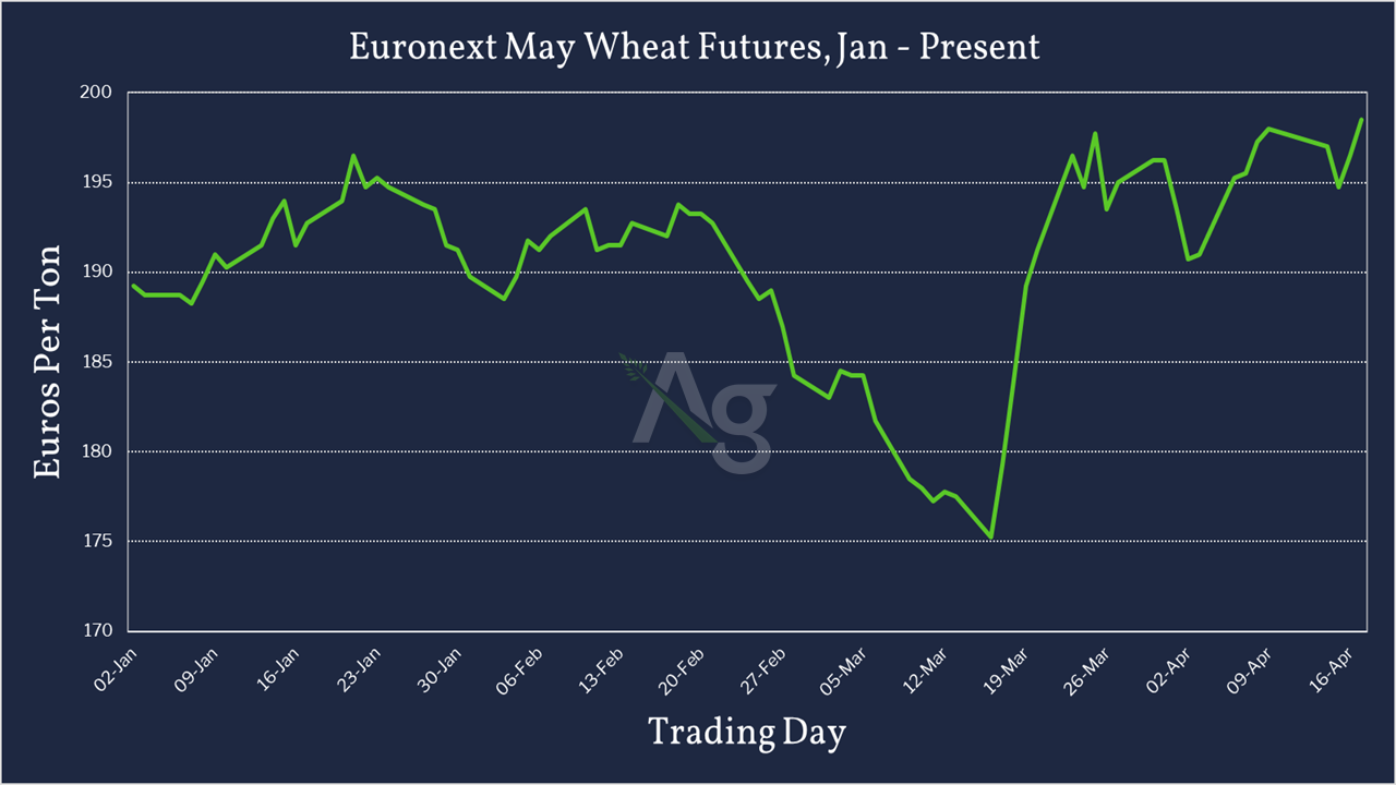 Euronext May Wheat Futures - Jan - Present